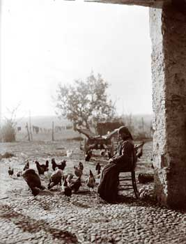 Before Halloween the filò - Woman feeding the chickens