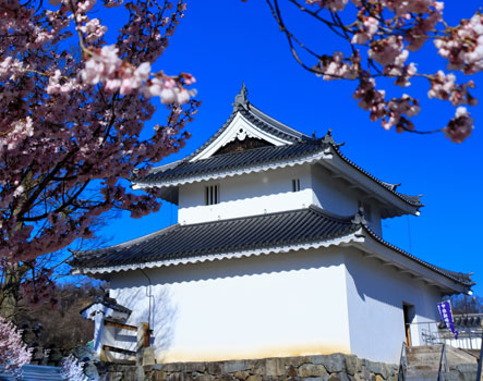 Kofu castle in spring, Japan