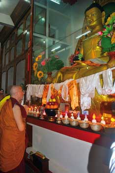Upon having made three prostrations before the image of the Buddha, Nicky prays