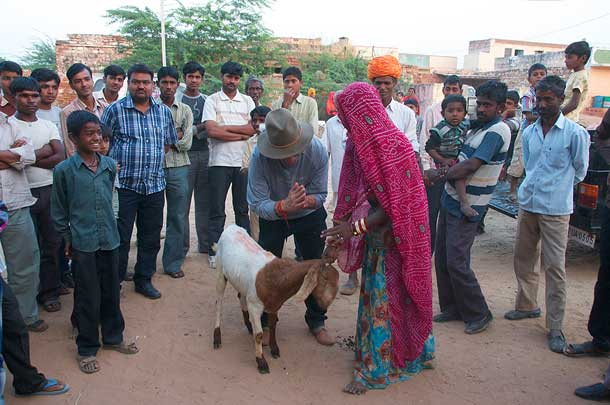 Relief Riders handing over a goat