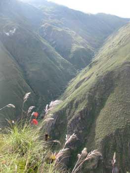 Trekking near Kuelap