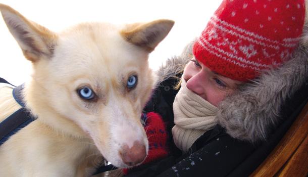 The blue-eyed husky stunner