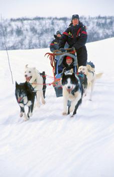 Husky-sledging